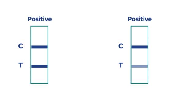 Pozitív Boson teszt