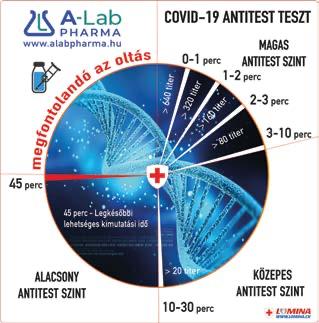 Lomina antitest teszt